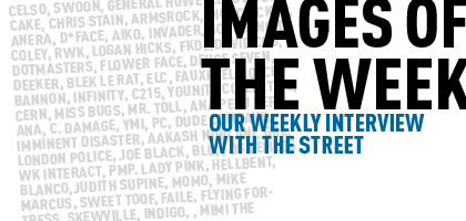 Our Weekly Interview with the Street: This week featuring Constellation, QRST, She Wolf, Dan Witz,$howta, C215