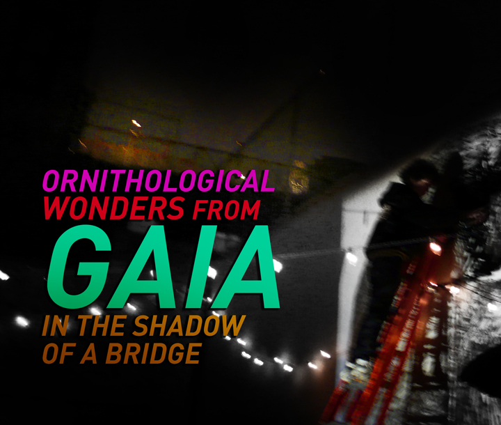 Brooklyn-Street-Art-WEB-GAIA-Orintological-Cover