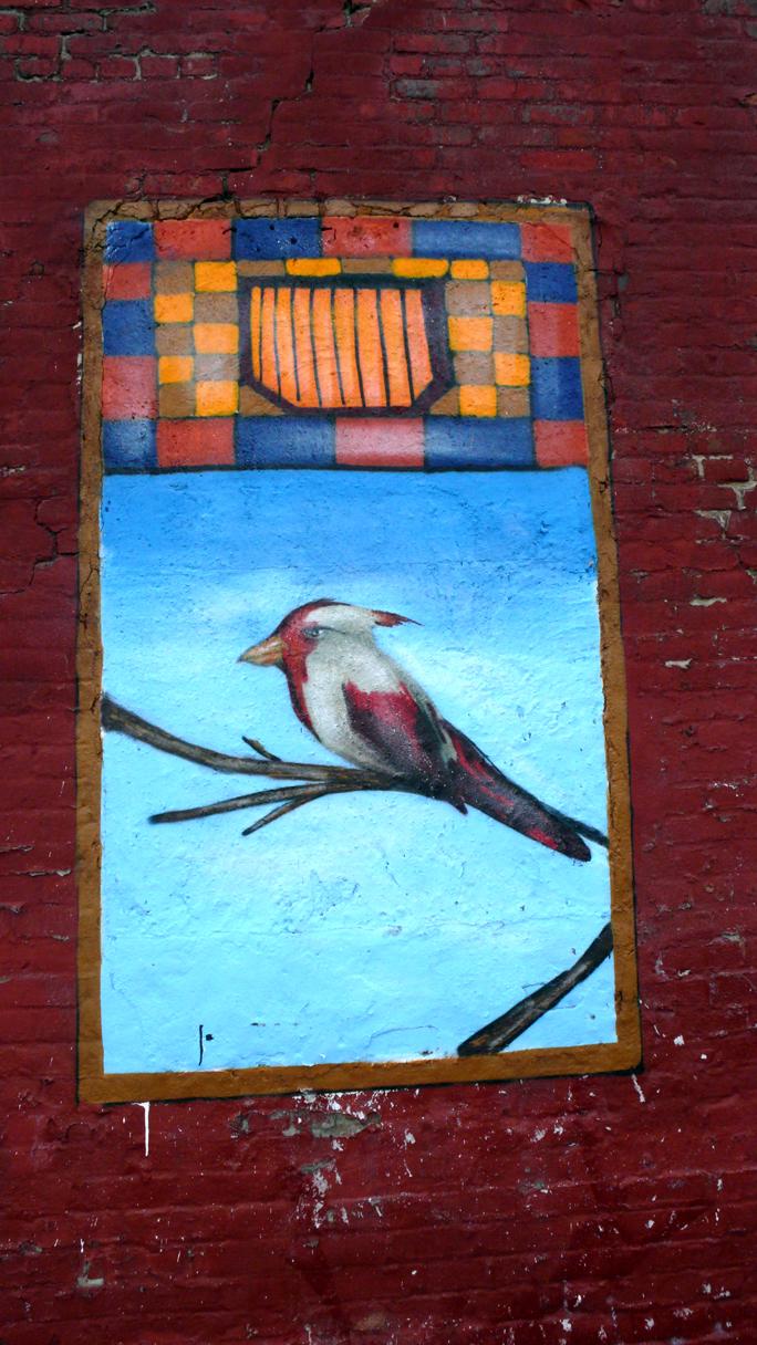 Veng Bird