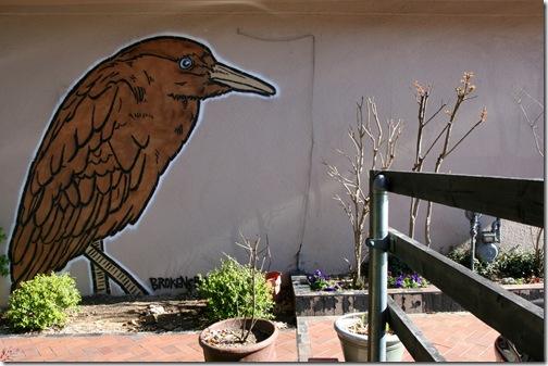 Broken Crow in Austin Image ©Becki Fuller