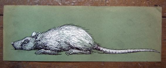 Brooklyn-Street-Art-Roa-Pure-Evil-April8-2010-sleeping rat
