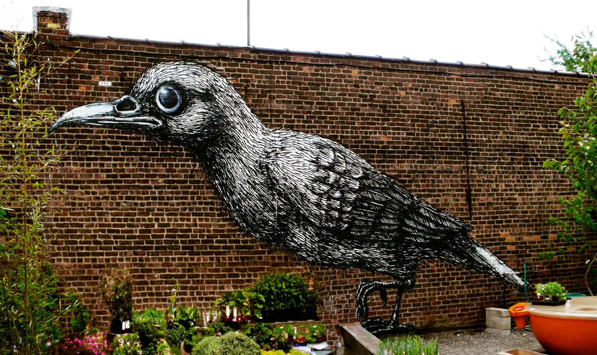 One of ROA's two new Brooklyn birds (photo  Jaime Rojo)