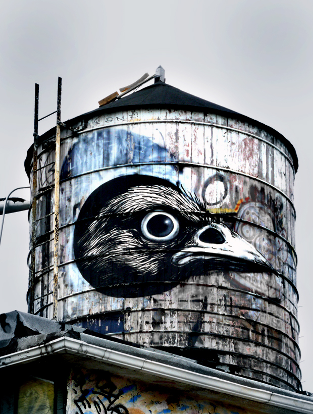 DEBUT VIDEO: ROA Alights Atop a Brooklyn Roof and Hits the Water Tower