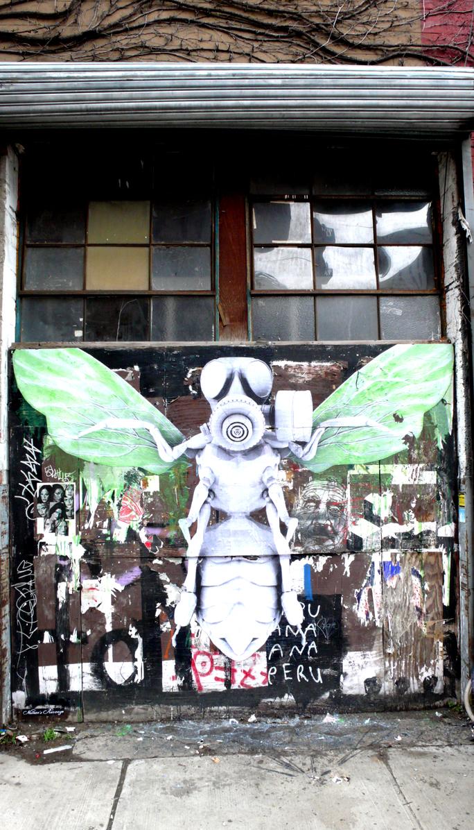 ludo in brooklyn pretty malevolence growing on the wall brooklyn street art. Black Bedroom Furniture Sets. Home Design Ideas