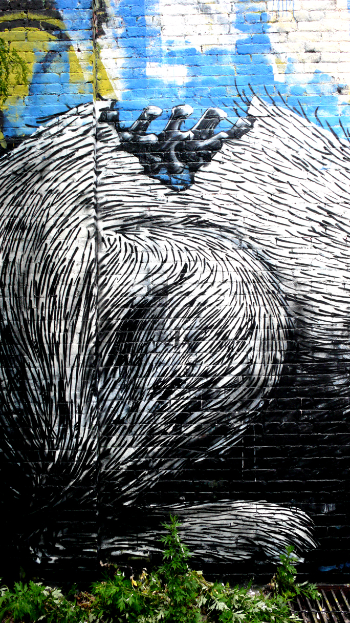 ROA (Photo©Jaime Rojo)