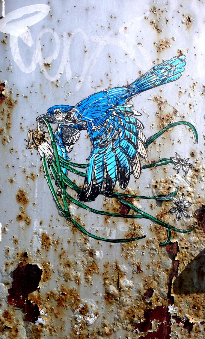 brooklyn-street-art-elbow-toe-jaime-rojo-7