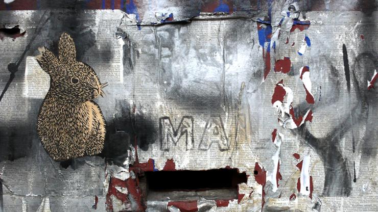 Yote Mail Bunny. (© Jaime Rojo)