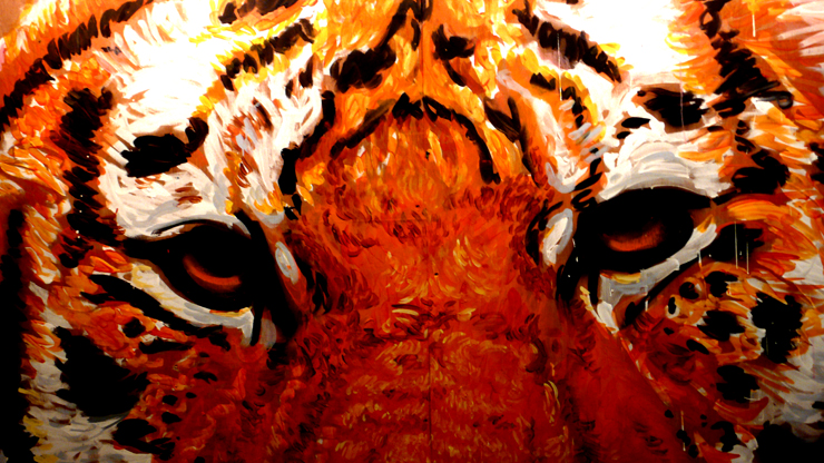 Gaia's Tiger Detail (Photo © Jaime Rojo)