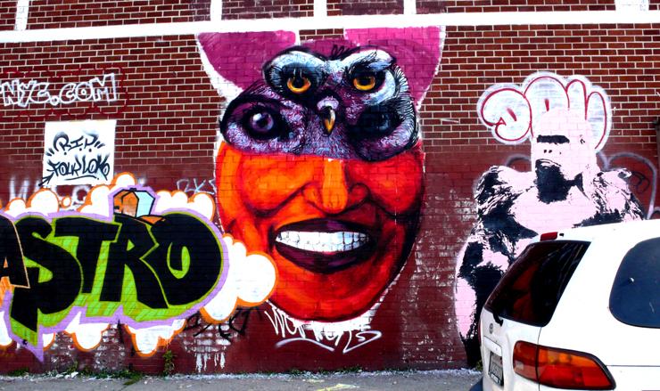 brooklyn-street-art-gaia-samson-castro-jaime-rojo-11-10-web