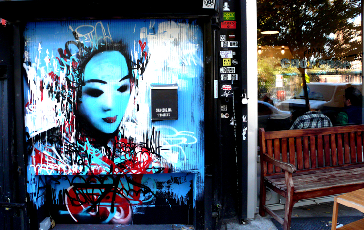 brooklyn-street-art-hush-jaime-rojo-11-10-10-web