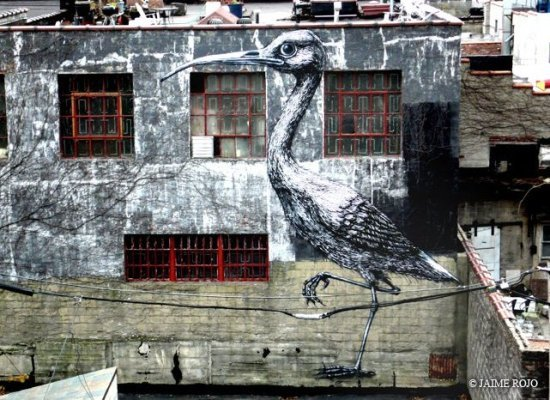 Brooklyn-Street-Art-copyright-Jaime-Rojo-2 ibis