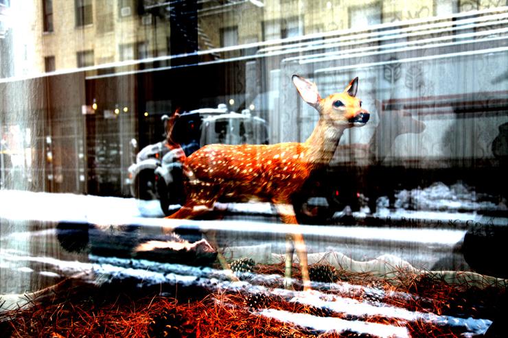 brooklyn-street-art-jaime-rojo-urban-diaorama-01-11