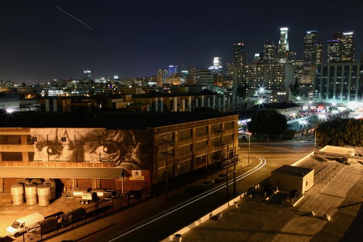 brooklyn-street-art-JR-todd-mazer-02-11-5-web