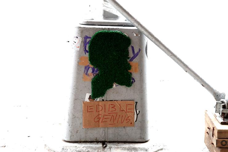 brooklyn-street-art-edible-genius-jaime-rojo-02-11-4-web