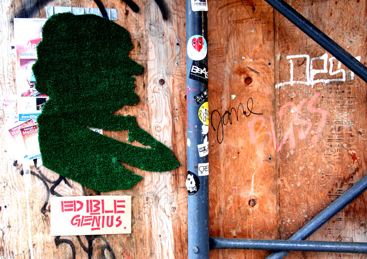 brooklyn-street-art-edible-genius-jaime-rojo-02-11-5-web