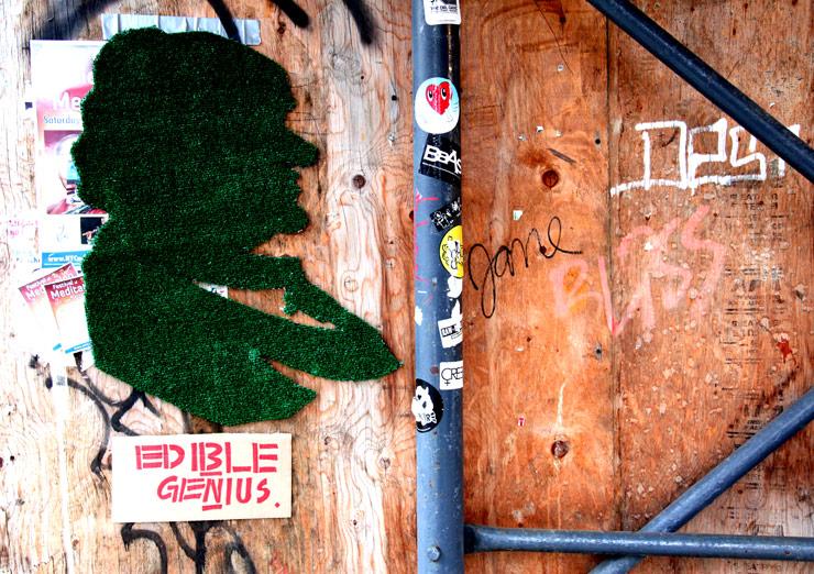 brooklyn-street-art-edible-genius-jaime-rojo-02-11-5-web