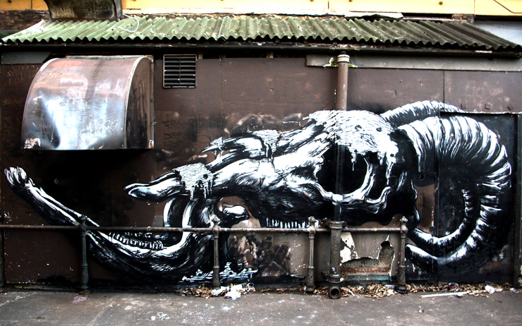 brooklyn-street-art-roa-mikko-eley-03-11-web