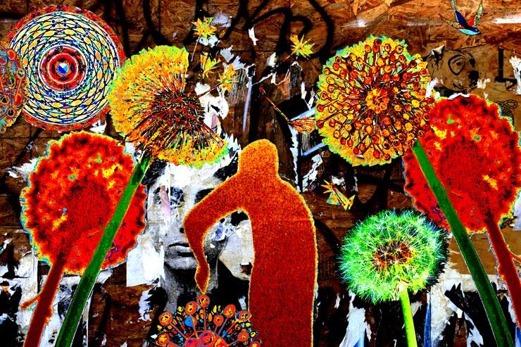 brooklyn-street-art-shin-shin-jaime-rojo-03-11-16-web
