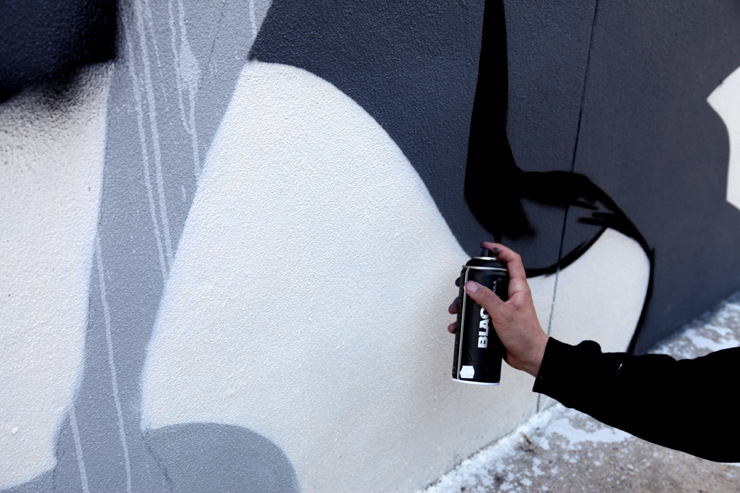 brooklyn-street-art-tristan-eaton-jaime-rojo-03-11-web-4