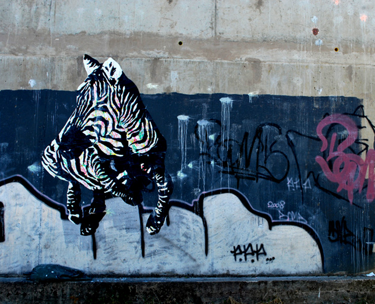 brooklyn-street-art-Shai- Dahan-zebra-web