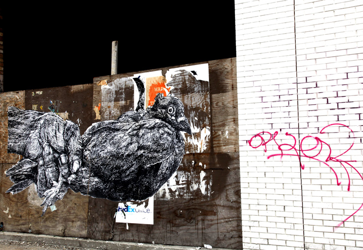 brooklyn-street-art-gaia-jaime-rojo-04-11-web-6