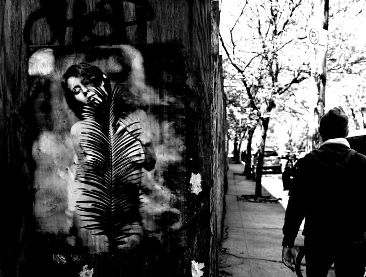 brooklyn-street-art-jaime-rojo-05-11-web-1