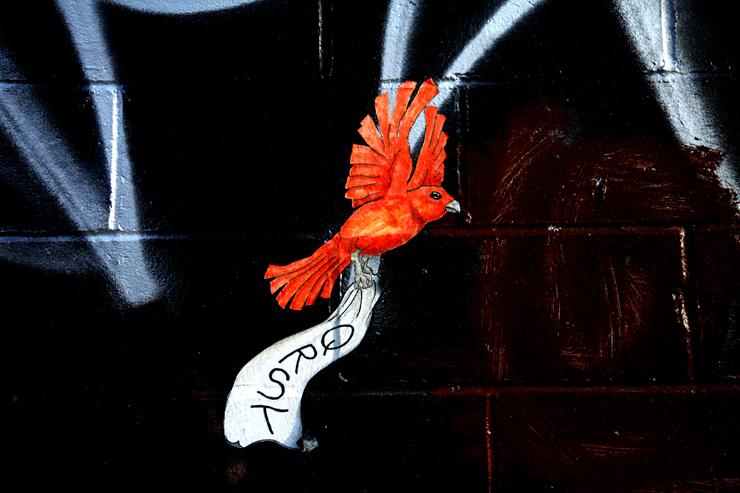 brooklyn-street-art-qrst-jaime-rojo-05-11-web-5