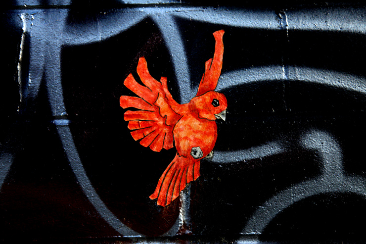 brooklyn-street-art-qrst-jaime-rojo-05-11-web-6