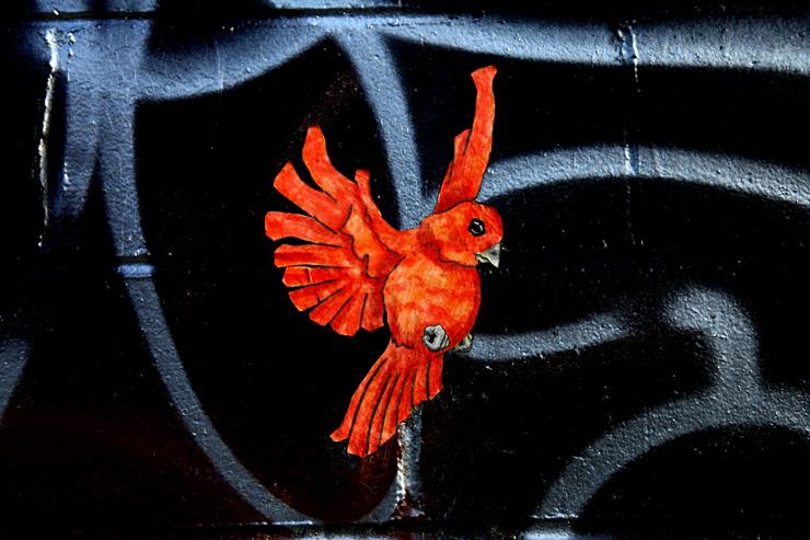 brooklyn-street-art-qrst-jaime-rojo-05-11-web-6