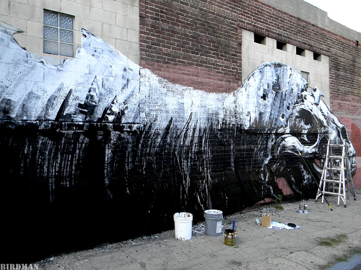 brooklyn-street-art-roa-birdman-05-11-1-web