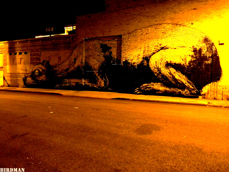 brooklyn-street-art-roa-birdman-05-11-26-web