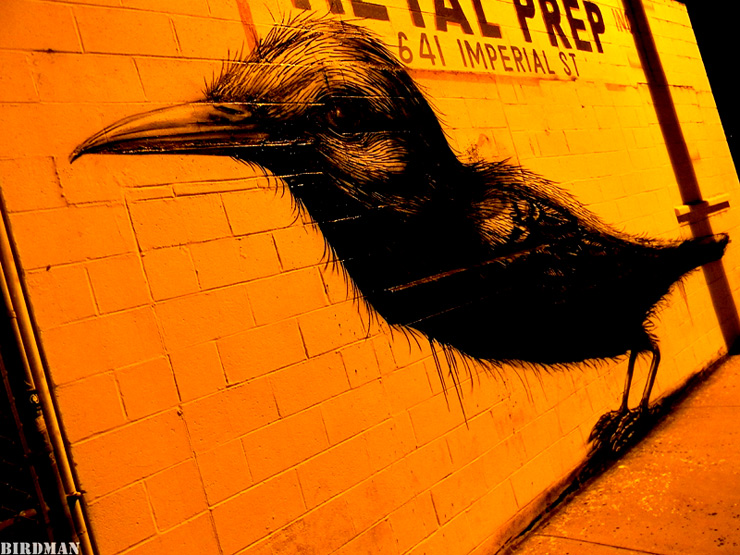 brooklyn-street-art-roa-birdman-05-11-30-web