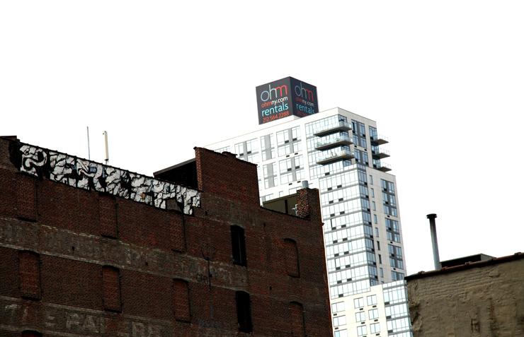 brooklyn-street-art-cept-jaime-rojo-the-high-line-nyc-06-11-web