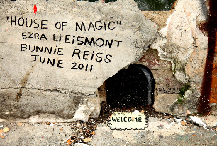 brooklyn-street-art-ezra-li-eismont-jaime-rojo-welling-court-2011-ad-hoc-art-06-11-web-15