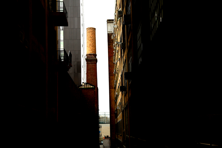 brooklyn-street-art-jaime-rojo-the-high-line-nyc-06-11-web-10