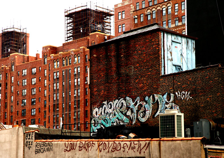 brooklyn-street-art-jaime-rojo-the-high-line-nyc-06-11-web-12