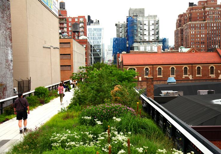 brooklyn-street-art-jaime-rojo-the-high-line-nyc-06-11-web-23