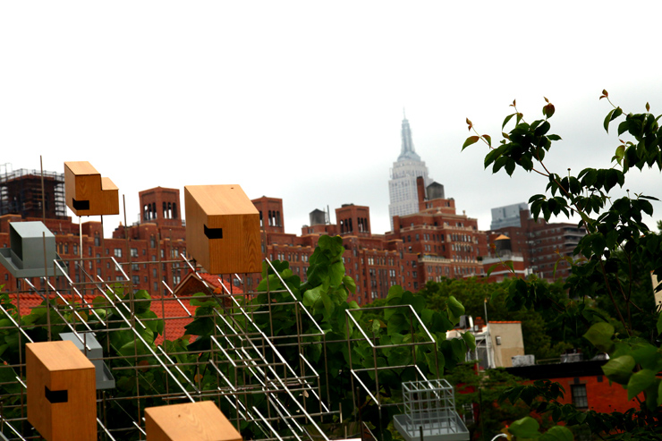 brooklyn-street-art-sarah-sze-jaime-rojo-the-high-line-nyc-06-11-web-20
