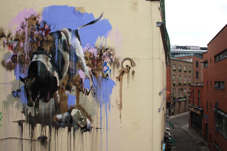 brooklyn-street-art-conor-harrington-dublin-cowboys