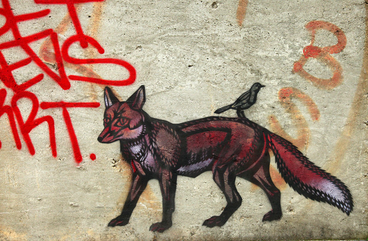 brooklyn-street-art-fox-with-bird-jaime-rojo-07-11-web