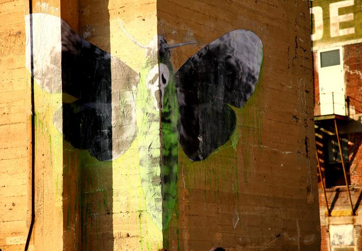 brooklyn-street-art-ludo-jaime-rojo-street-art-los-angeles-08-11-web-15
