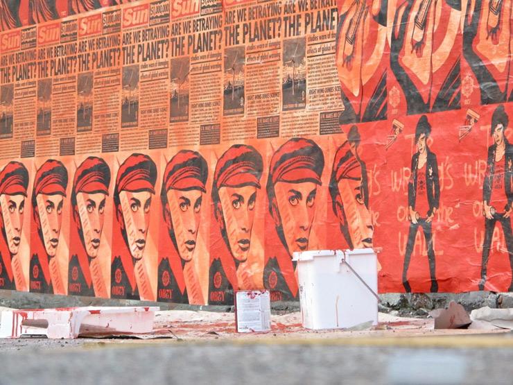 brooklyn-street-art-shepard-fairey-sandra-hoj-conpenhagen-5-web