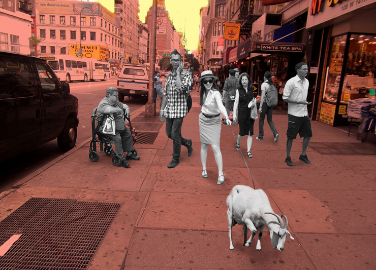brooklyn-street-art-art-in-odd-places-AiOP-2011-Marissa Mickelberg-Goat Walk