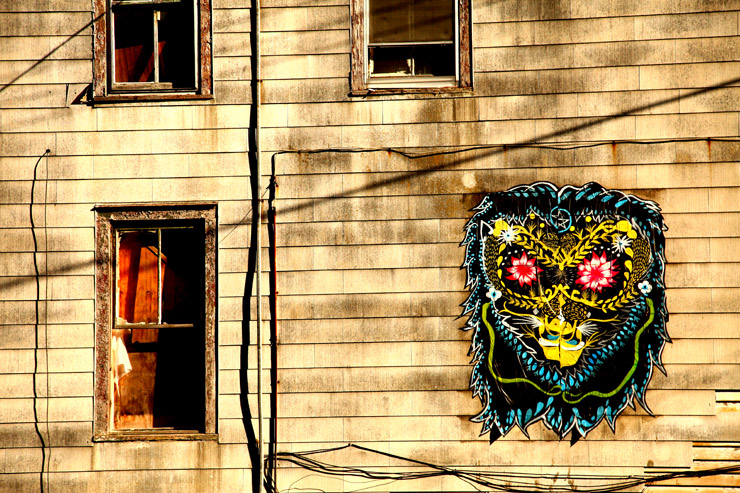 brooklyn-street-art-artist-unknown-jaime-rojo-albany-living-walls-09-11-web