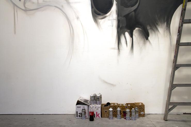 brooklyn-street-art-kid-zoom-Andrius-Lipya-Luke-McKinnon-san-francisco-web