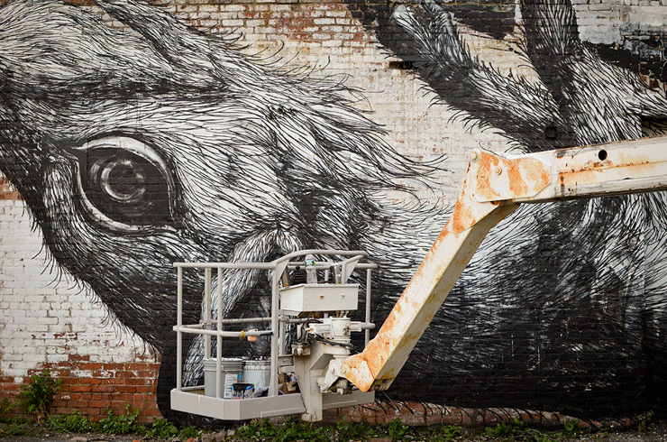 brooklyn-street-art-roa-andrew-franciosa-living-walls-albany-2-web
