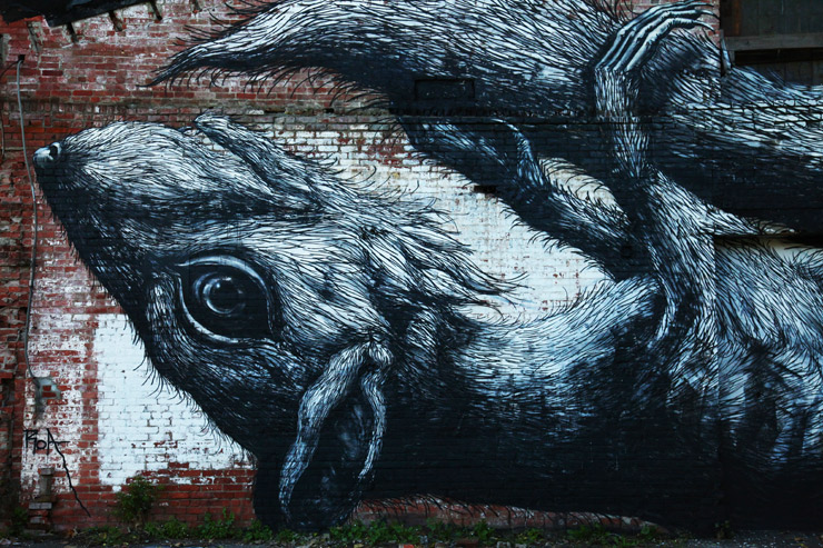 brooklyn-street-art-roa-jaime-rojo-living-walls-albany-09-11-web-1