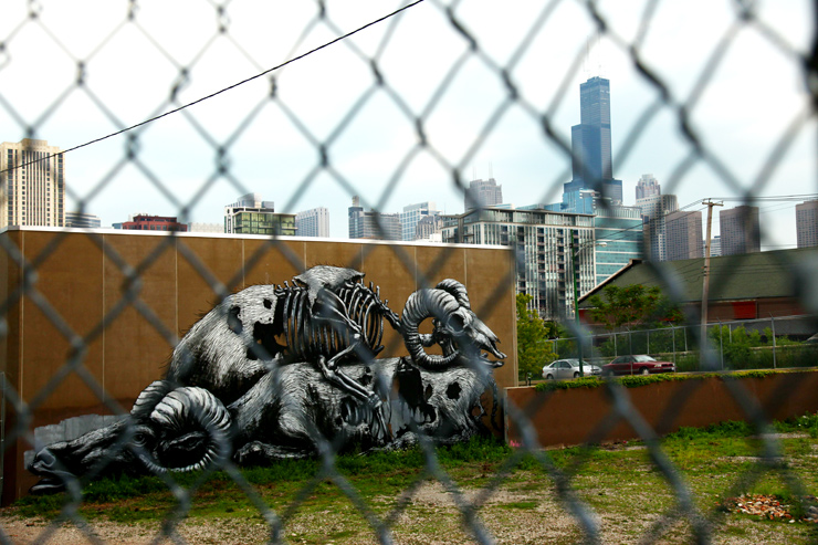 brooklyn-street-art-roa-jaime-rojo-los-angeles-chicago-09-11-web-13