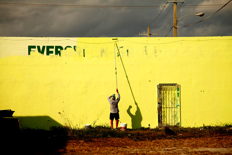 Images of the Week 02.12.12