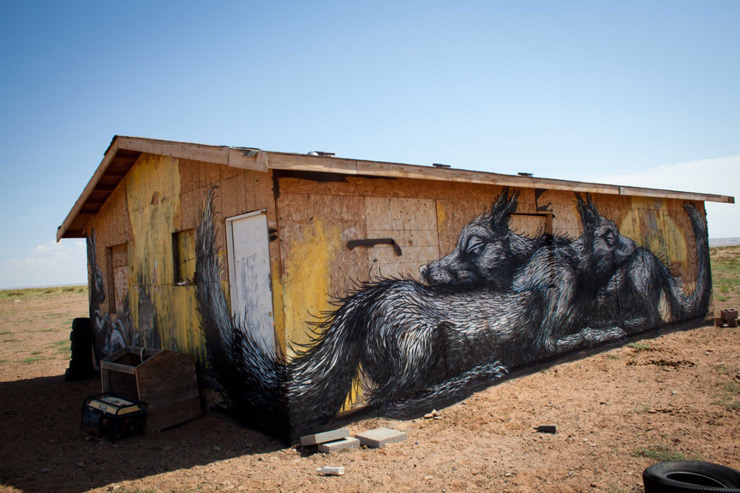 ROA in The Navajo Nation Desert with Sleeping Enemies